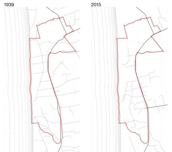 Kelių ir takų tinklo palyginimas